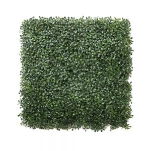 BOXWOOD MATT