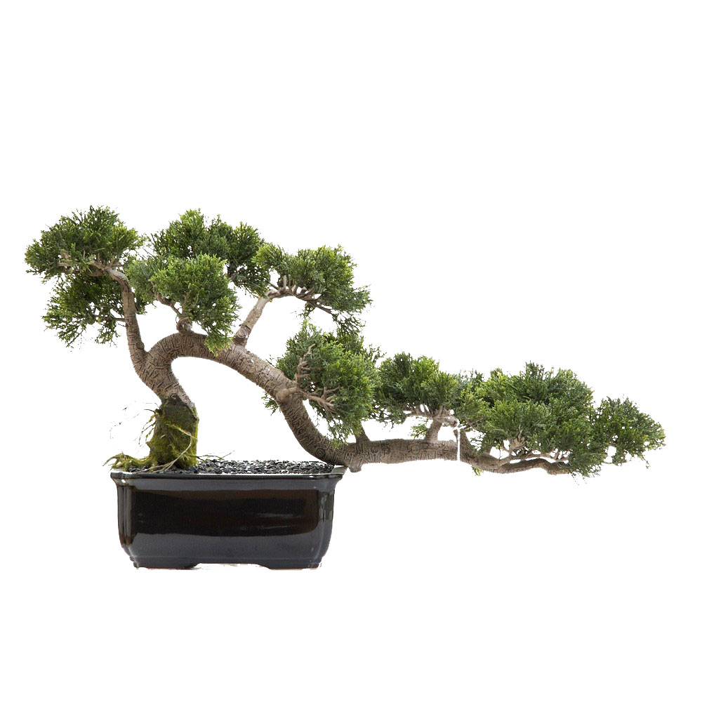 ARTIFICIAL BONSAI TREES