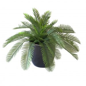 ARTIFICIAL TABLETOP PLANTS