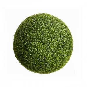 boxwood-ball-55cm